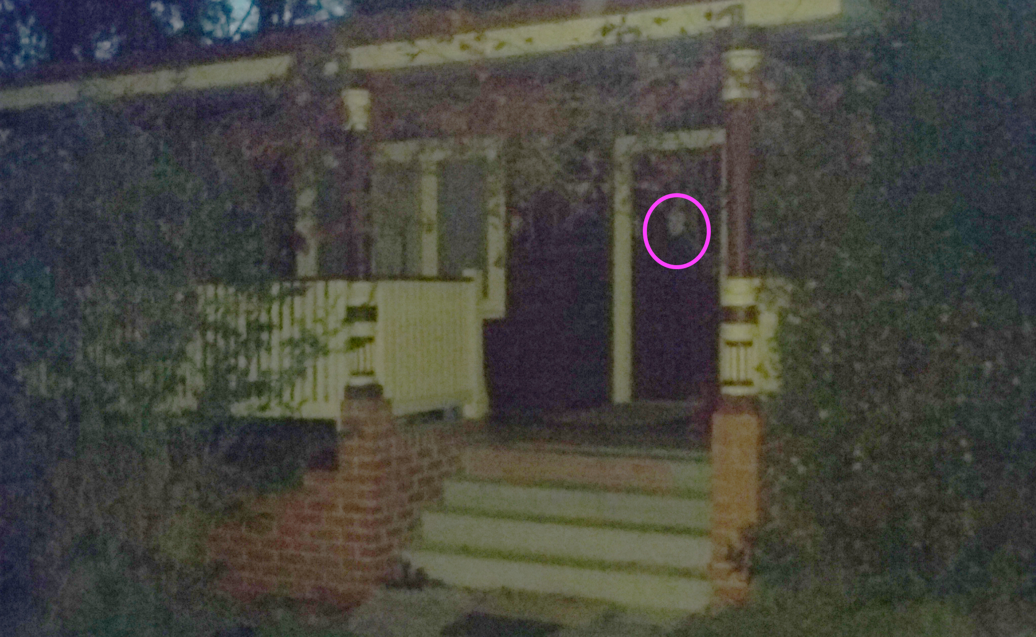 Tim the Yowie Man's Ultimate Ghost Tour (overnight